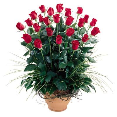 Kırklareli çiçek satışı  10 adet kirmizi gül cam yada mika vazo