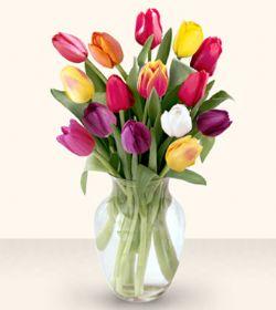 Kırklareli çiçek yolla , çiçek gönder , çiçekçi   13 adet cam yada mika vazoda laleler