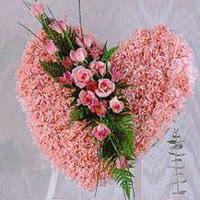 kalp pano karankil ve güller   Kırklareli İnternetten çiçek siparişi
