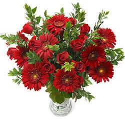 5 adet kirmizi gül 5 adet gerbera aranjmani  Kırklareli kaliteli taze ve ucuz çiçekler