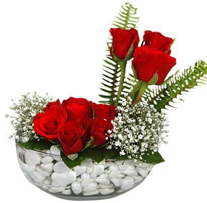 cam içerisinde 9 adet kirmizi gül  Kırklareli çiçek gönderme sitemiz güvenlidir