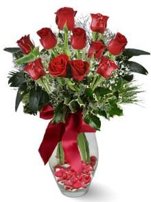 9 adet gül  Kırklareli online çiçekçi , çiçek siparişi  kirmizi gül