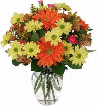 Kırklareli hediye çiçek yolla  vazo içerisinde karışık mevsim çiçekleri