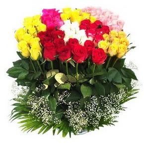 Kırklareli internetten çiçek satışı  51 adet renkli güllerden aranjman tanzimi