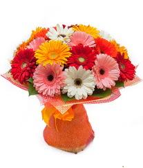 Renkli gerbera buketi  Kırklareli ucuz çiçek gönder