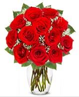 12 adet vazoda kıpkırmızı gül  Kırklareli çiçek gönderme