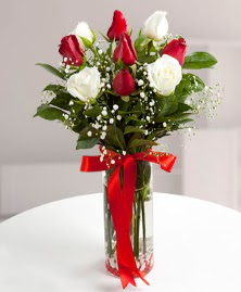 5 kırmızı 4 beyaz gül vazoda  Kırklareli çiçekçi telefonları