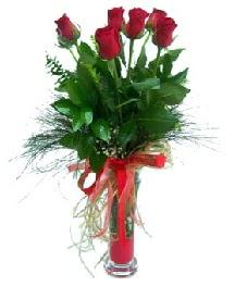 vazo içerisinde 5 kırmızı gül  Kırklareli internetten çiçek siparişi