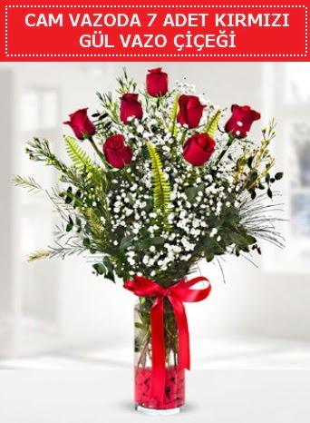 Cam vazoda 7 adet kırmızı gül çiçeği  Kırklareli uluslararası çiçek gönderme