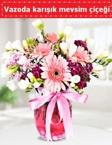 Vazoda karışık mevsim çiçeği  Kırklareli çiçek servisi , çiçekçi adresleri
