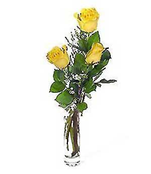 Kırklareli İnternetten çiçek siparişi  3 adet kalite cam yada mika vazo gül