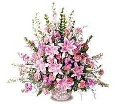 Kırklareli yurtiçi ve yurtdışı çiçek siparişi  Tanzim mevsim çiçeklerinden çiçek modeli