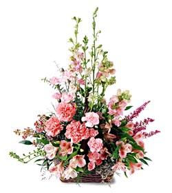 Kırklareli çiçek mağazası , çiçekçi adresleri  mevsim çiçeklerinden özel