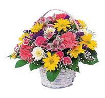 Kırklareli çiçek servisi , çiçekçi adresleri  mevsim çiçekleri sepeti özel