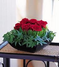 Kırklareli yurtiçi ve yurtdışı çiçek siparişi  10 adet kare mika yada cam vazoda gül tanzim