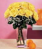 Kırklareli online çiçekçi , çiçek siparişi  9 adet sari güllerden cam yada mika vazo
