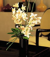 Kırklareli çiçek yolla , çiçek gönder , çiçekçi   cam yada mika vazo içerisinde dal orkide