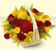 Kırklareli çiçek , çiçekçi , çiçekçilik  sepette mevsim çiçekleri