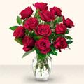 Kırklareli 14 şubat sevgililer günü çiçek  10 adet gül cam yada mika vazo da