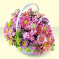 Kırklareli çiçek siparişi vermek  bir sepet dolusu kir çiçegi  Kırklareli uluslararası çiçek gönderme