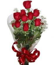 9 adet kaliteli kirmizi gül   Kırklareli online çiçek gönderme sipariş