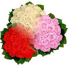 3 renkte gül seven sever   Kırklareli çiçek servisi , çiçekçi adresleri