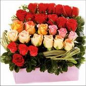15 adet renkli gül ve cam   Kırklareli güvenli kaliteli hızlı çiçek