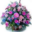 karisik mevsim kir çiçekleri  Kırklareli uluslararası çiçek gönderme