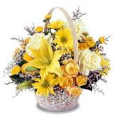 sadece sari çiçek sepeti   Kırklareli uluslararası çiçek gönderme