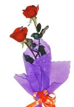 2  adet kirmizi gül buketi   Kırklareli çiçek servisi , çiçekçi adresleri