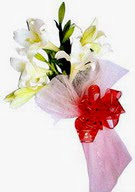 Kırklareli çiçek servisi , çiçekçi adresleri  ince vazoda gerbera ve ayi