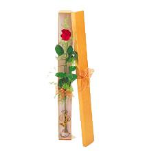 ince  kutuda  1  gül   Kırklareli 14 şubat sevgililer günü çiçek