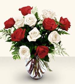Kırklareli çiçek satışı  6 adet kirmizi 6 adet beyaz gül cam içerisinde
