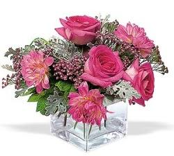 Kırklareli çiçekçi telefonları  cam içerisinde 5 gül 7 gerbera çiçegi