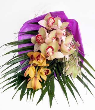 Kırklareli çiçekçi telefonları  1 adet dal orkide buket halinde sunulmakta