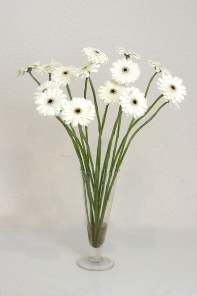 Kırklareli internetten çiçek satışı  cam vazo içerisinde 17 adet sade gerbera