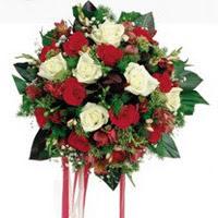 Kırklareli çiçek mağazası , çiçekçi adresleri  6 adet kirmizi 6 adet beyaz ve kir çiçekleri buket