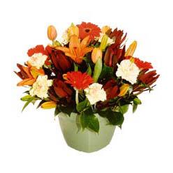 mevsim çiçeklerinden karma aranjman  Kırklareli cicek , cicekci
