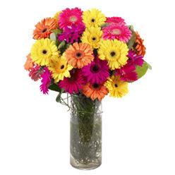 KARISIK GERBERALARDAN CAM VAZO TANZIMI  Kırklareli internetten çiçek siparişi