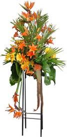 Kırklareli yurtiçi ve yurtdışı çiçek siparişi  perförje tanzimi dügün nikah ve açilislara