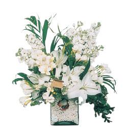 Kırklareli İnternetten çiçek siparişi  sadece beyazlardan olusmus mevsim cam yada mika tanzim