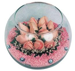 Kırklareli online çiçekçi , çiçek siparişi  cam fanus içerisinde 10 adet gül