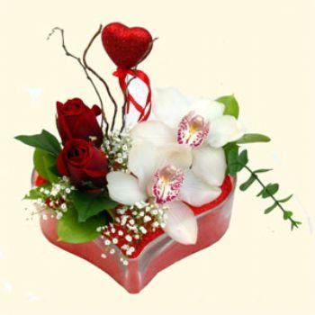 Kırklareli hediye çiçek yolla  1 kandil orkide 5 adet kirmizi gül mika kalp