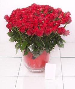 Kırklareli çiçek gönderme  101 adet kirmizi gül