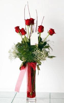 Kırklareli çiçekçi telefonları  6 adet kirmizi gül ve cam yada mika vazo