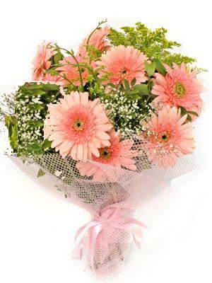 Kırklareli çiçek online çiçek siparişi  11 adet gerbera çiçegi buketi
