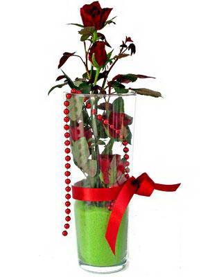 Kırklareli çiçek yolla  Cam yada mika içerisinde 9 adet kirmizi gül - sevdiklerinize özel