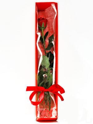 Kırklareli çiçek siparişi vermek  1 adet kutuda gül