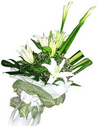 Kırklareli internetten çiçek siparişi  3 dal kazablanka çiçegi ve yesillikler