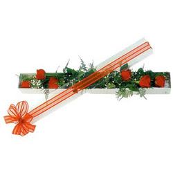 Kırklareli yurtiçi ve yurtdışı çiçek siparişi  6 adet kirmizi gül kutu içerisinde